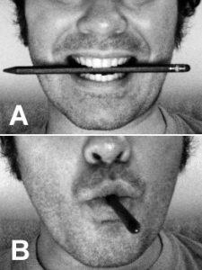 hipótesis del feedback facial