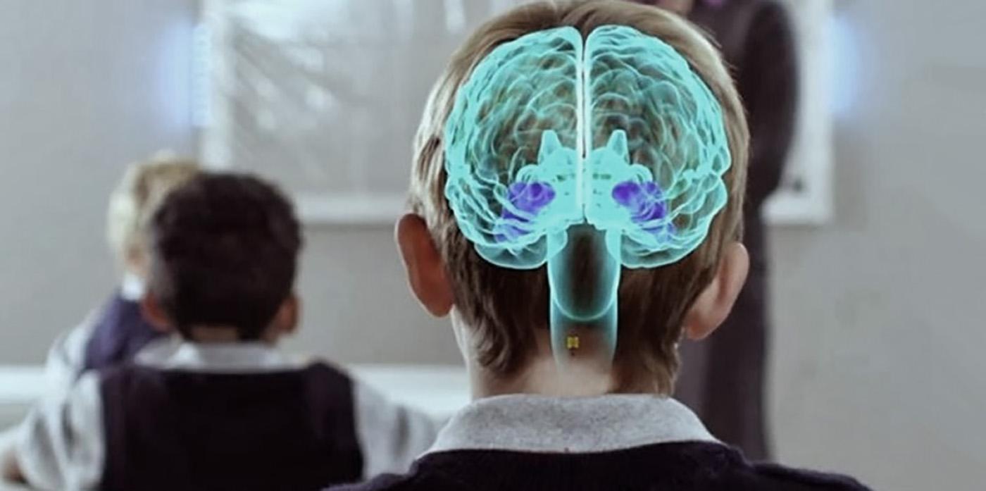 Resultado de imagen de NEUROCIENCIA Y EDUCACIÓN